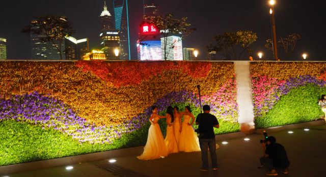 The Bund is very popular for wedding couples, taking pictures. Photo: Björn Lundström
