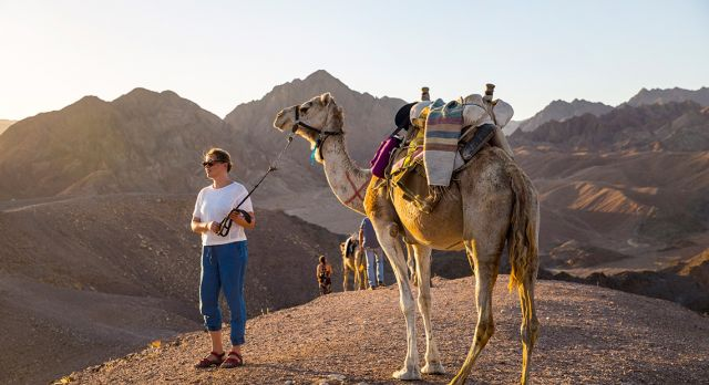 The mountains and deserts around Eilat have welcomed camel caravans for millennia. Photo: Robert Seger