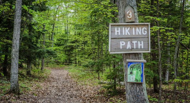 Take an app with you on your next hike. Photo: Shutterstock