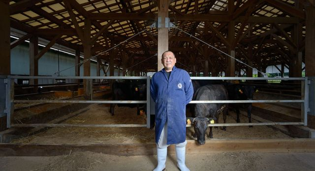 Ohta-san's farm - feeding produces champions. Photos: Alfie Goodrich