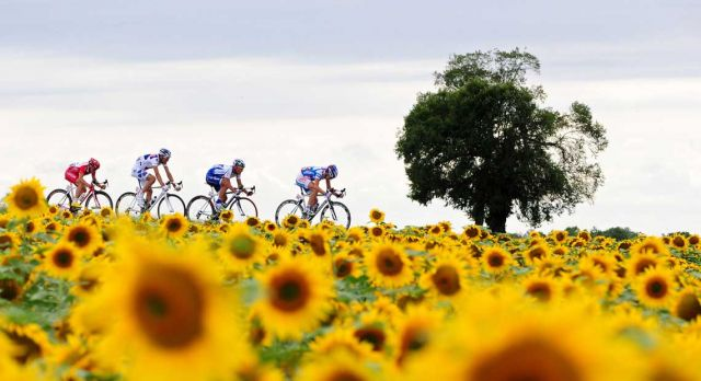 12 million is the number of spectators that line the route of the Tour de France – making it the largest sporting event in the world.