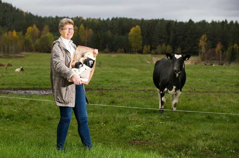 Annemarie Sando at Eiker Gårdsysteri is very successful in making its cheese Holtefjell XO.