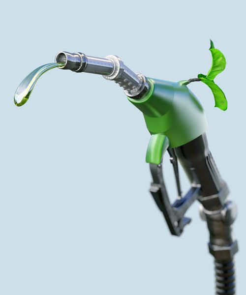 Biofuel can reduce CO2 emissions by up to 80% throughout their lifecycle. Photo: Shutterstock