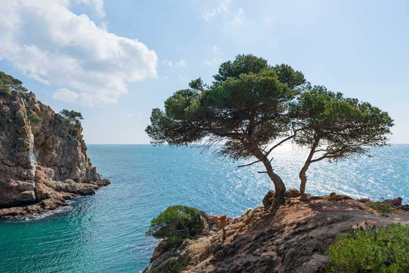 The landscapes along the Costa Brava, north of Barcelona, are spectacular. Photo: Shutterstock