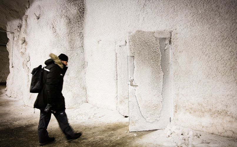 The seed vault, located more than 100m inside the mountain, can store 4.5 million seeds. Photo: Mattias Heyde
