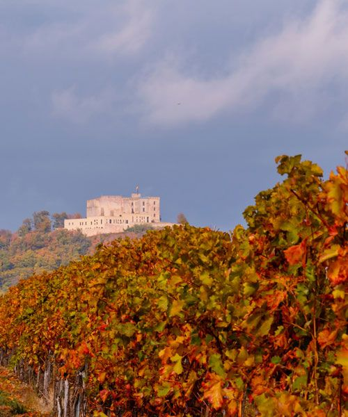 Hambacher Schloss is worth stopping for. Photo: Shutterstock.