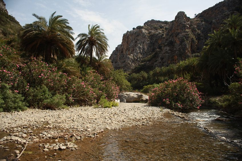 Preveli beach and gorge are chock-full of palm trees and other exotic features. Photo: Andrew Blackwell