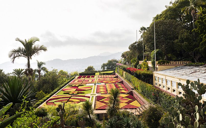 Like a piece of art – Madeira's famous botanical garden. Photo: Oliver Martin