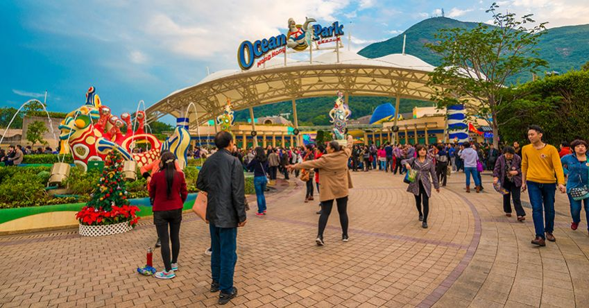 Ocean Park in Hong Kong has one of a dozen floorless roller coasters in the world. Photo: Shutterstock