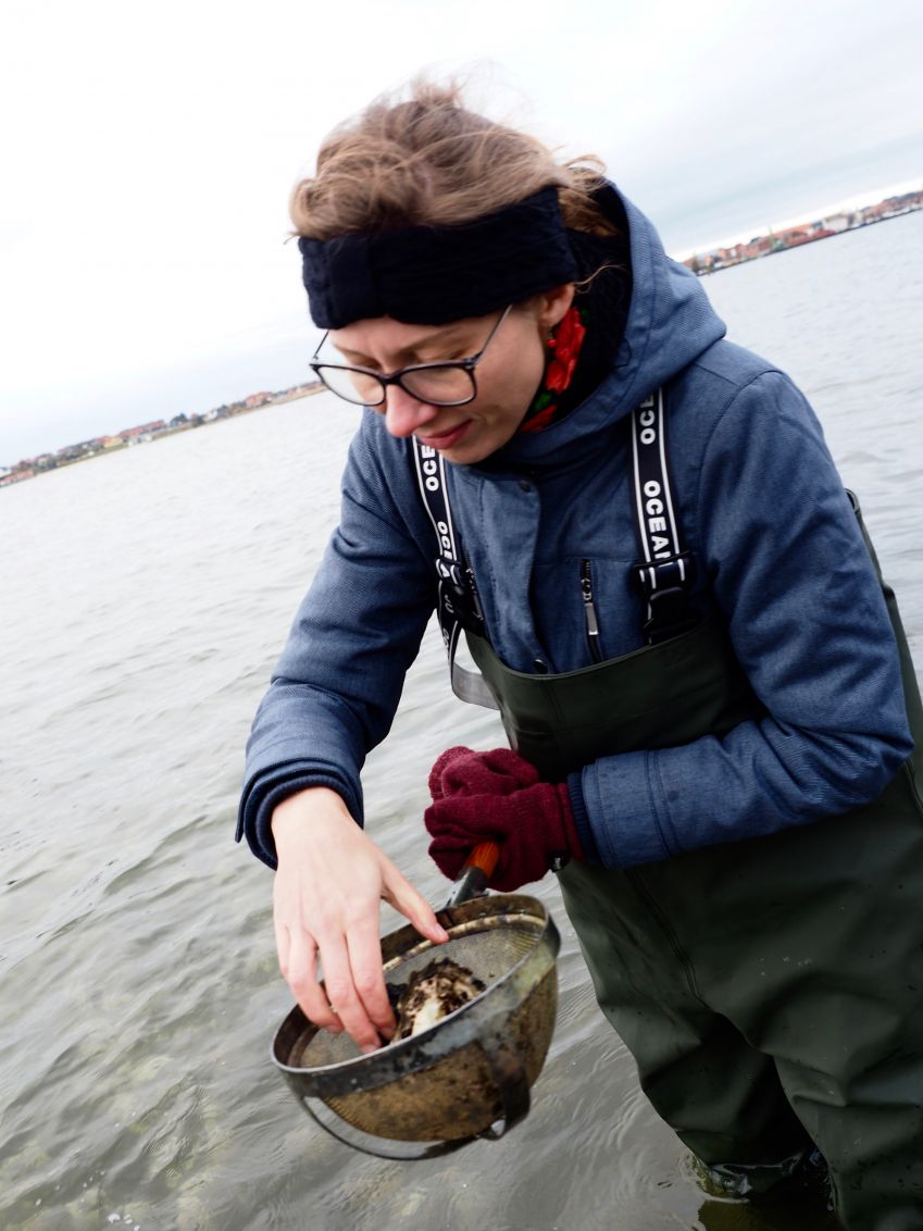 Here are oysters! Photo: Malgosia Minta/MintaEats.com