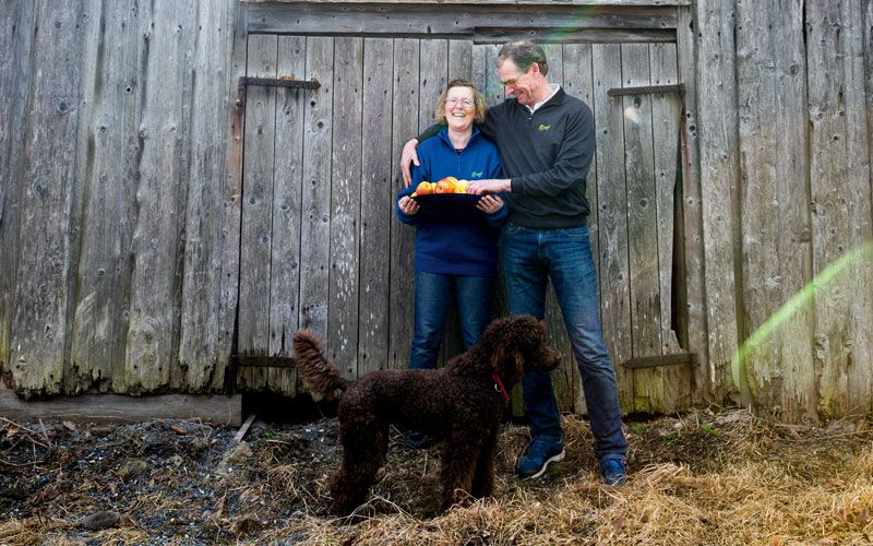 Charlotta and her husband Jon Østen Ringi runs the farm. Photo: Sara Johannessen