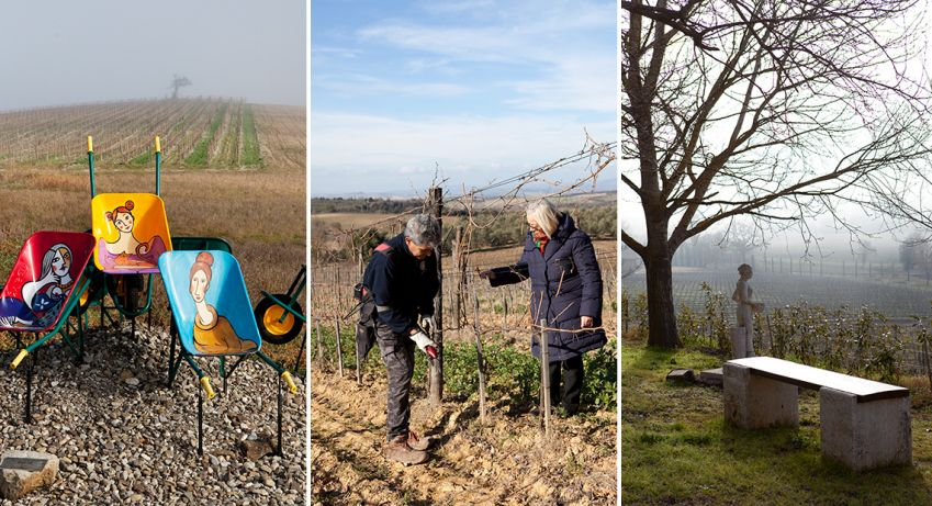 Cultivating and caring for the vines ensures a strong future. Photo: Johanna Ekmark