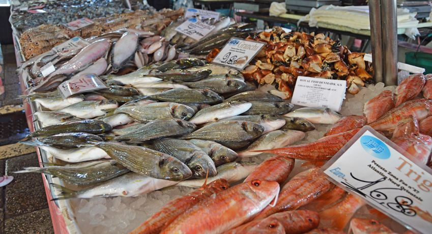 Plenty of fish at the Rialto fish market. Photo: Emma Brink